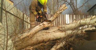 Intervenția salvatorilor în urma pagubelor provacate de vântul puternic