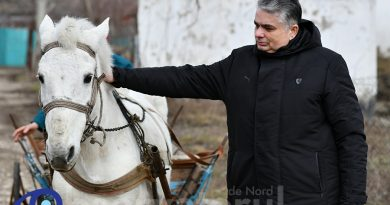 Foto /VIDEO/Consulul General al României de la Bălți a cumpărat la licitație calul școlii din Căinarii Vechi 2 22.09.2021