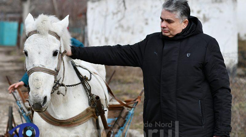 /VIDEO/Consulul General al României de la Bălți a cumpărat la licitație calul școlii din Căinarii Vechi 1 07.03.2021