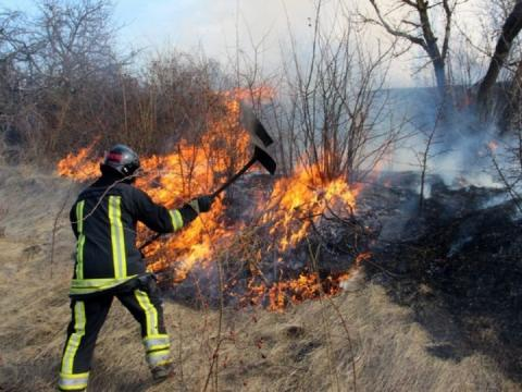 În ultimele 24 de ore pompierii au intervenit la stingerea a 54 incendii de vegetație