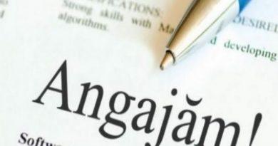 În Republica Molova sunt anunțate pste nouă mii locuri de muncă vacante