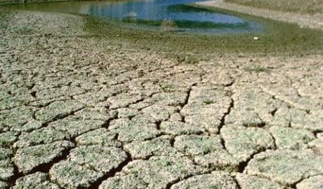Atenție! Cod Galben de secetă hidrologică în mai multe regiuni ale țării