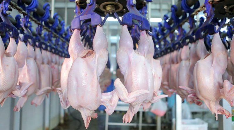 Ucraina va putea importa din nou carne de pasăre în Republica Moldova