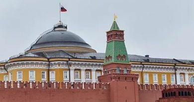 В Кремле не видят поводов для введения ЧС в России из-за коронавируса. Голосование по Конституции тоже переносить не собираются 4 11.05.2021