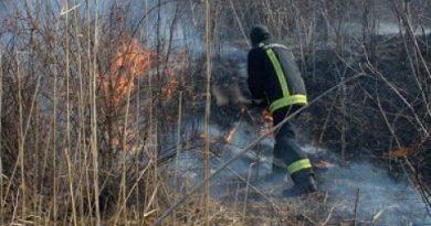 Pompierii au intervenit la stingerea a 21 incendii de vegetație