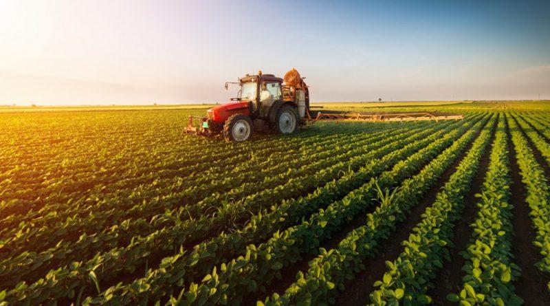 Raioanele Dondușeni și Edineț sunt lideri la depunerea cererilor pentru a primi subvenții în agricultură