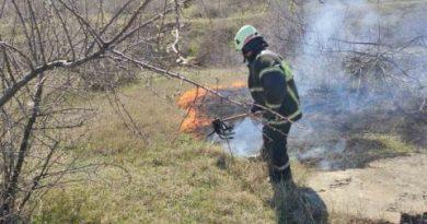 Pompierii au intervenit la stingerea a 30 incendii de vegetație