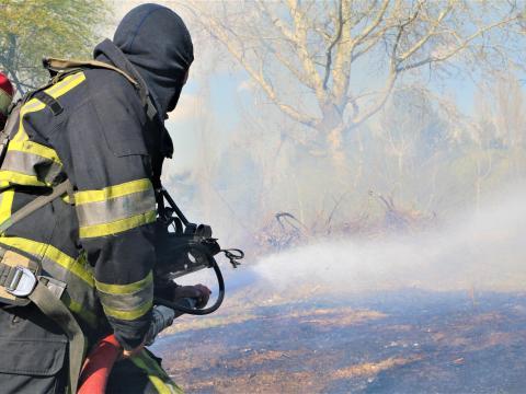 /VIDEO/ Pompierii au intervenit la stingerea a 66 incendii de vegetație