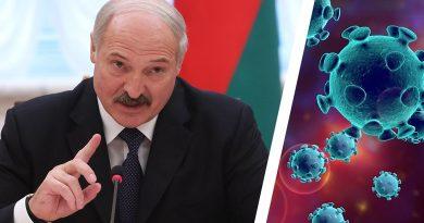Foto Президент Беларуси Александр Лукашенко назвал лучший продукт для борьбы с коронавирусом 3 29.07.2021
