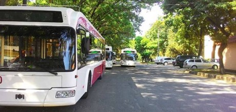 Transportul public din Bălți și Chișinău va fi sistat în acest weekend