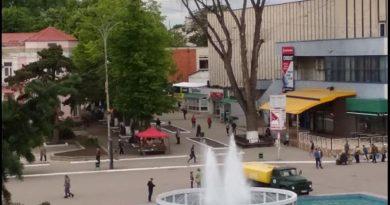 Foto Бельчанин Николай Усатый показал администрации города огромное сухое дерево, которое в любой момент может рухнуть 7 01.08.2021