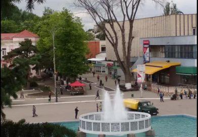 Бельчанин Николай Усатый показал администрации города огромное сухое дерево, которое в любой момент может рухнуть
