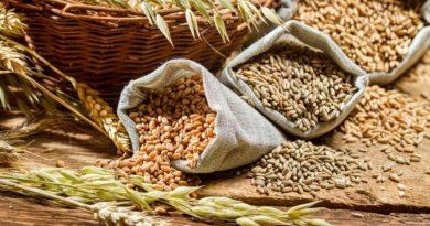 Republica Moldova ocupă locul doi la importul de cereale din Ucraina