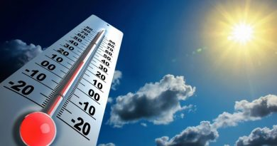 Foto Российские метеорологи считают, что 2020 год может стать самым теплым за всю историю метеонаблюдений в мире 3 29.07.2021