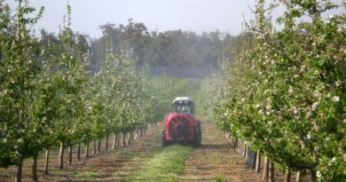 Mai multe produse de uz fitosanitar radiate din Registrul de stat. Cum vor fi afectați producătorii agricoli 1