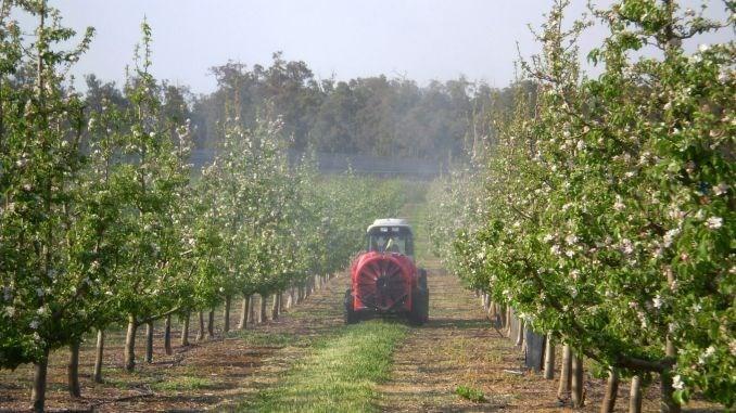 Mai multe produse de uz fitosanitar radiate din Registrul de stat. Cum vor fi afectați producătorii agricoli 1 18.05.2021