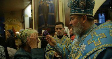 Епископ Бельцкий и Фэлештский Маркелл заразился коронавирусом? 4
