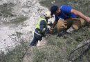 /VIDEO/ Două capre au fost salvate la Edineț după ce au nimerit într-o carieră de piatră