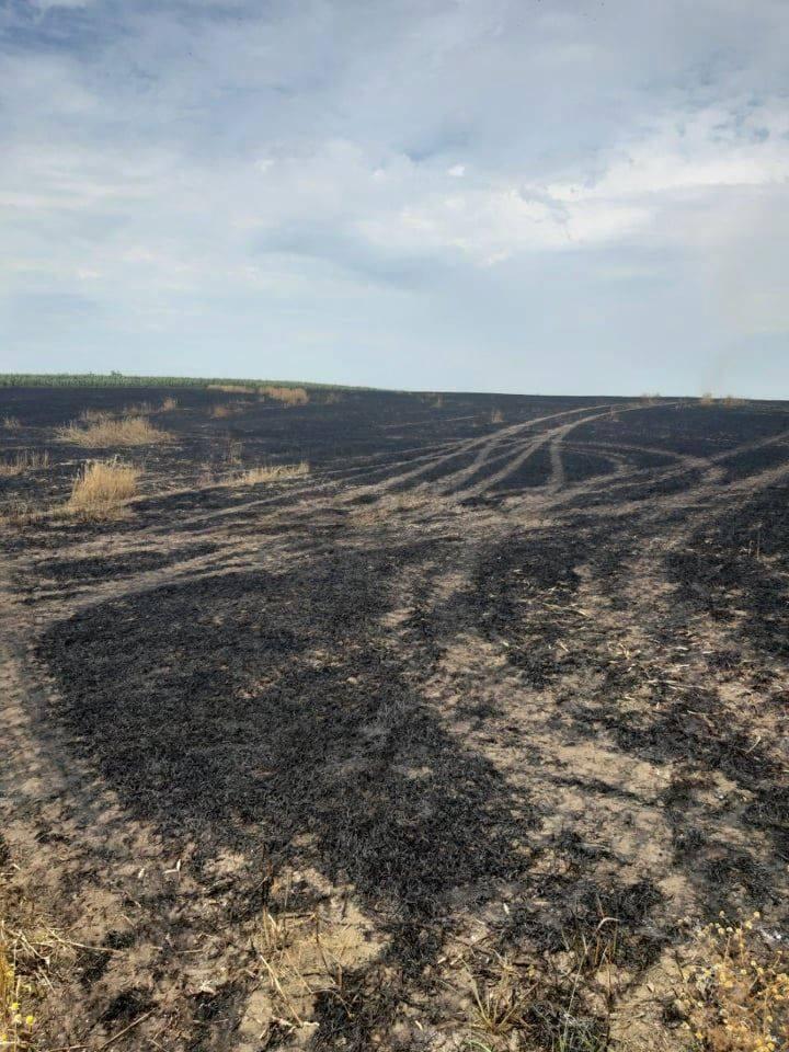 Foto /FOTO/ Șapte hectare de grâu au fost mistuite de flăcări în raionul Dondușeni 2 14.06.2021