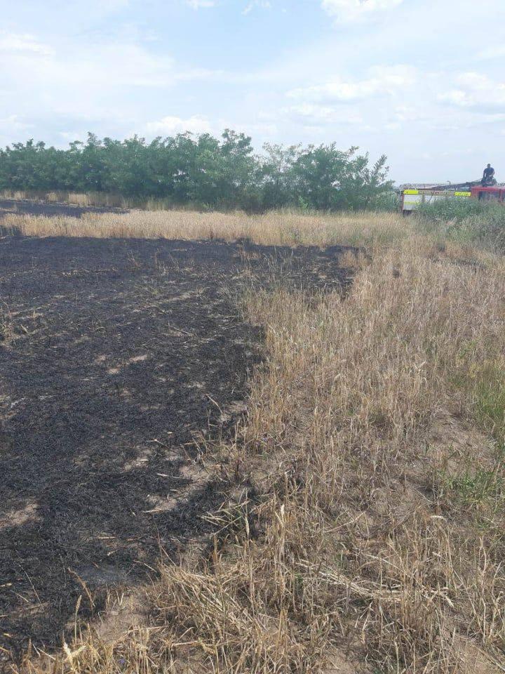 Foto /FOTO/ Șapte hectare de grâu au fost mistuite de flăcări în raionul Dondușeni 4 14.06.2021