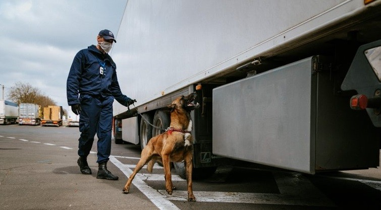 Încălcările depistate săptămâna trecută la vamă. 58 mijloace de transport au primit refuz de a intra în țară