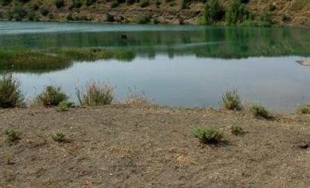 O fetiță din orașul Bălți s-a înecat în iazul satului Corlăteni