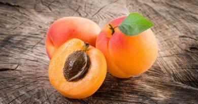 Foto Чем полезны абрикосы: удивительные преимущества для здоровья 3 29.07.2021