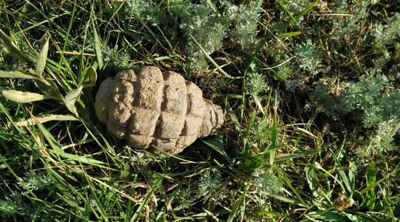 Un bărbat din raionul Glodeni a găsit o grenadă în timp ce lucra în grădină