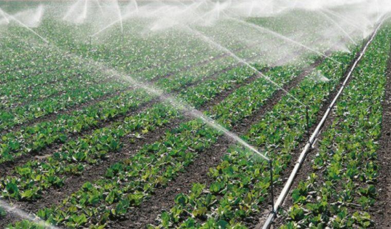 Экологи Молдовы выступили против использования подземных вод для нужд орошения 1 12.05.2021