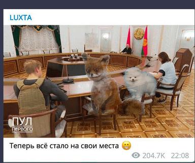 Foto Картофельный Рэмбо и белорусский Гном Гномыч. Реакция соцсетей на Лукашенко и Колю с автоматами 8 29.07.2021