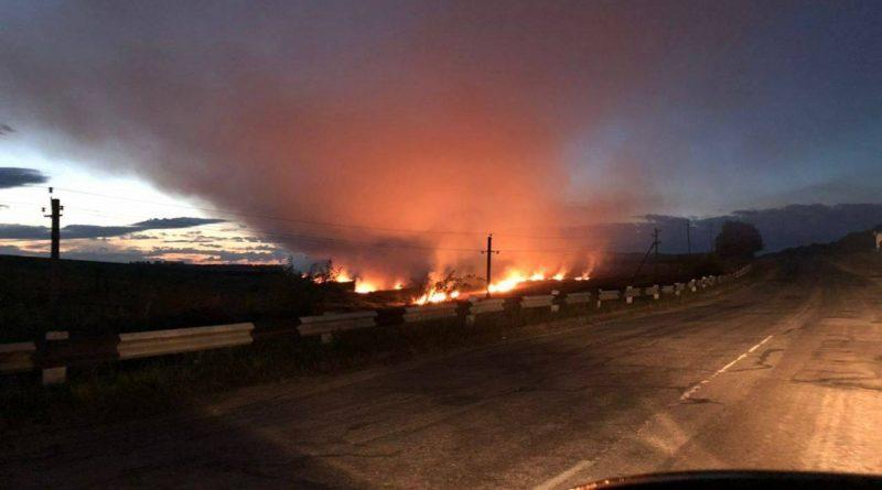 /VIDEO/ O miriște din raionul Ocnița a fost cuprinsă de flăcări