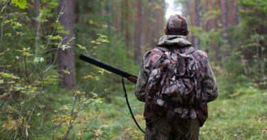 Guvernul a aprobat termenele de vânătoare pentru acest sezon. Vezi ce specii de păsări și animale ai voie să vânezi