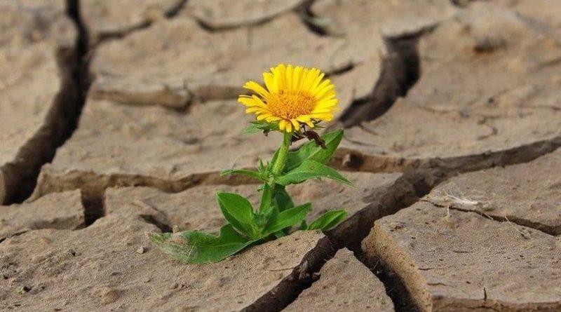 Atenție! Codul Galben și Portocaliu de secetă hidrologică a fost din nou prelungit în Republica Moldova