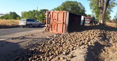 /FOTO/ Un camion plin cu sfeclă de zahăr s-a răsturnat în raionul Râșcani