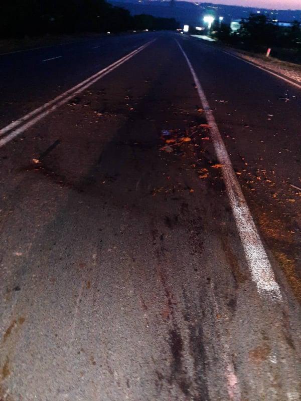 Foto Nouăsprezece oi au murit, iar șase au fost rănite în urma unui accident rutier 3 24.07.2021