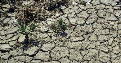 Atenție! Cod Portocaliu de secetă hidrologică