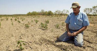 Такой засухи, как нынешняя, в республике не было с 1947 года 3 18.05.2021