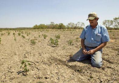 Такой засухи, как нынешняя, в республике не было с 1947 года