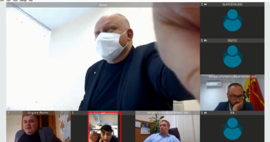 (Видео)Депутат-социалист Алла Долинцэ ела куриный суп и разговаривала по телефону во время онлайн-заседания 5 18.04.2021