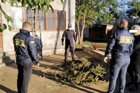 Percheziții în raionul Glodeni. În două gospodării au fost găsite substanțe narcotice