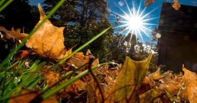 Foto Сентябрь стал самым теплым месяцем в мире за 30 лет метеонаблюдений 4 16.06.2021