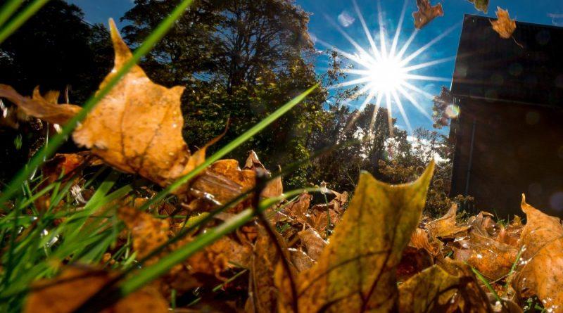 Foto Сентябрь стал самым теплым месяцем в мире за 30 лет метеонаблюдений 1 24.07.2021