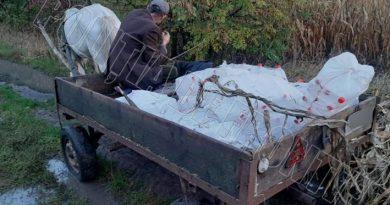 /VIDEO/ Un căruțaș din raionul Briceni a fost reținut în timp ce transporta ilegal 200 de butelii cu alcool ascunse în snopi de porumb