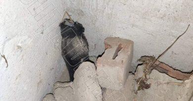 O sticlă cu mercur a fost găsită într-un bloc abandonat din apropierea unei stații de epurare a apei din raionul Briceni