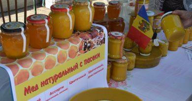 Un expo-târg al produselor apicole se va desfășura la Bălți