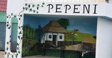 /FOTO/ O stație de așteptare din raionul Sângerei a fost transformtă într-o operă de artă