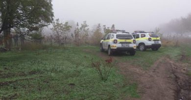 В Кишиневе в парке нашли повешенным 34-летнего мужчину 2 12.05.2021