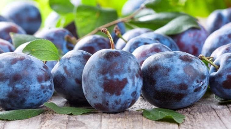 Un alt lot de aproximativ 20 tone de prune moldovenești a fost distrus în Federației Ruse