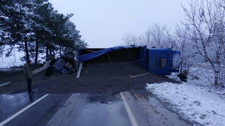 Un camion plin cu semințe de floarea soarelui s-a răsturnat în raionul Sângerei