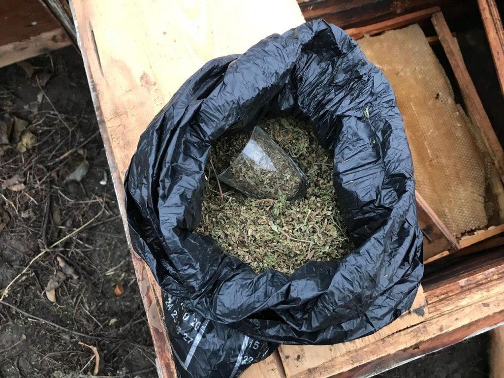 Substanțe narcotice depistate într-un stup de albine din raionul Soroca 1 12.04.2021